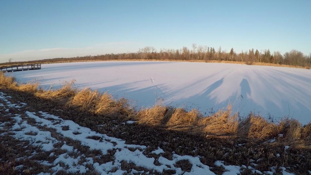 Necedah Lake