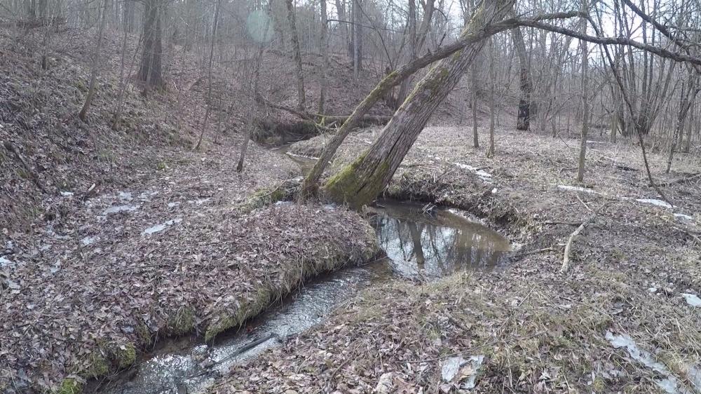 creek -0001