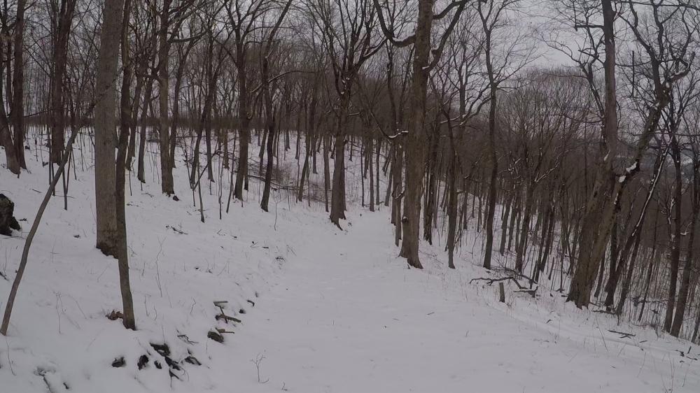 Snowmobile downhill