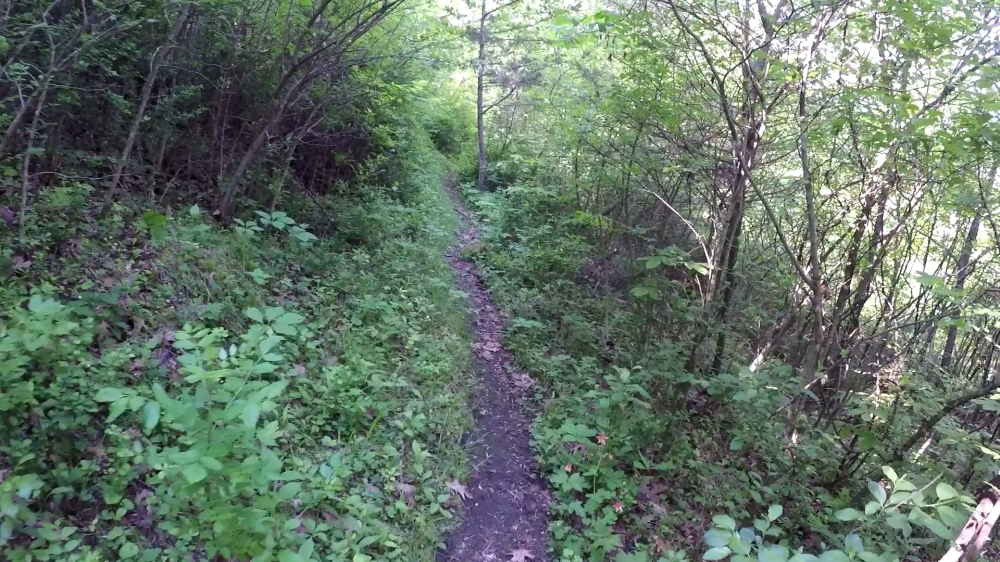 green coulee 2